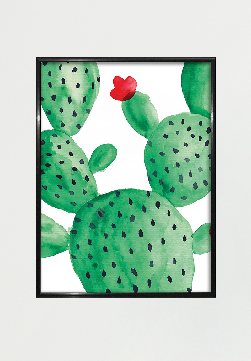Image of   Cactus II A4