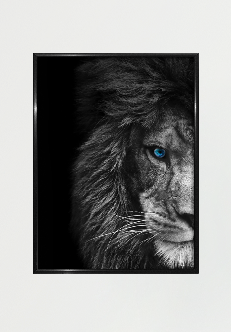 Image of   Lion A4